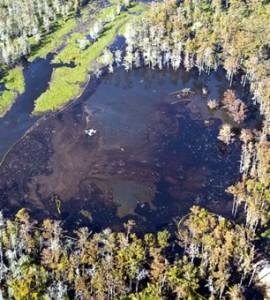 effondrement d'une cavité-salines - stockage-gaz-lande.net - Salins des Landes